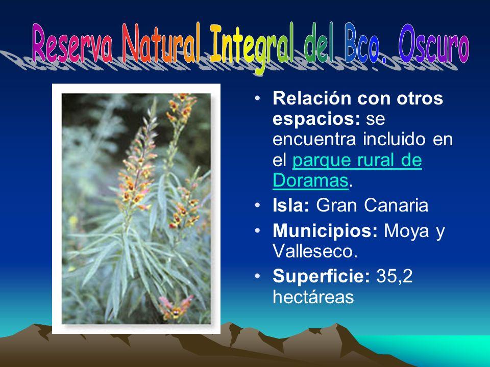 Reserva Natural Integral del Bco. Oscuro