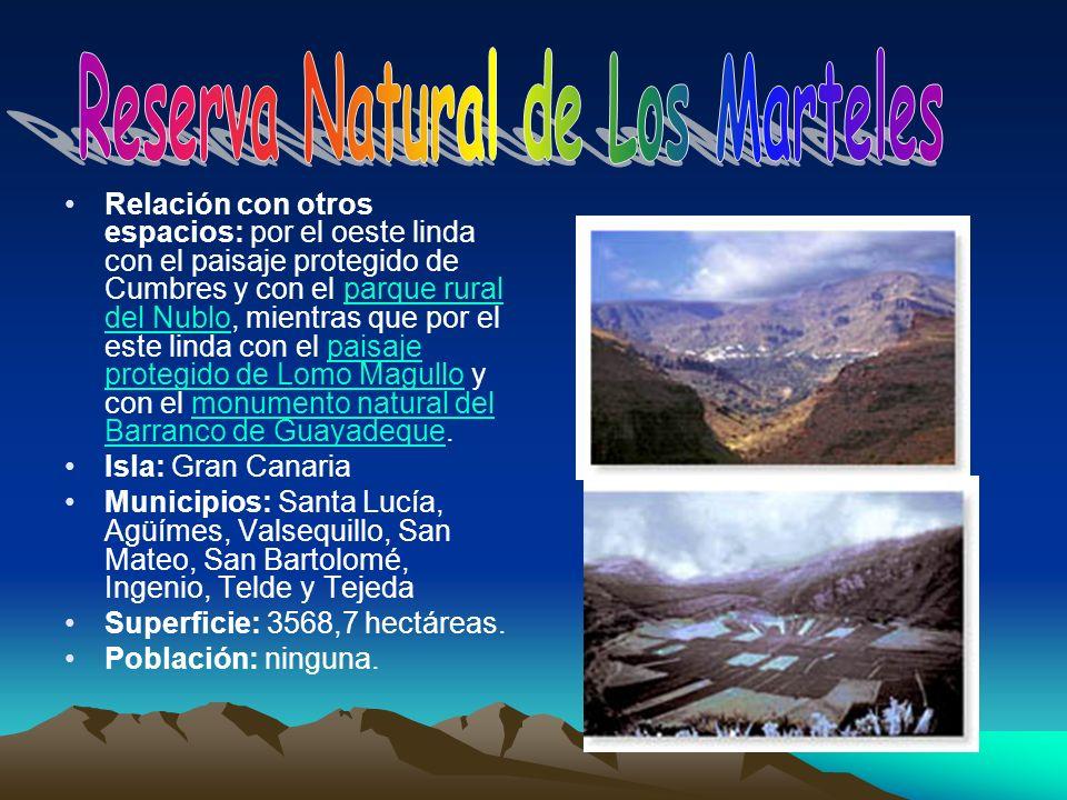 Reserva Natural de Los Marteles