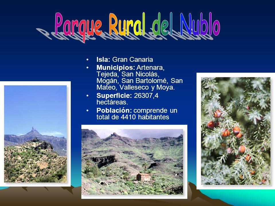 Parque Rural del Nublo Isla: Gran Canaria