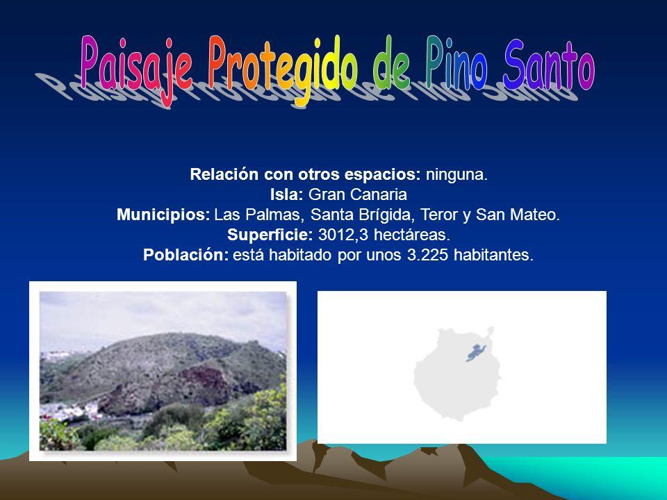 Paisaje Protegido de Pino Santo