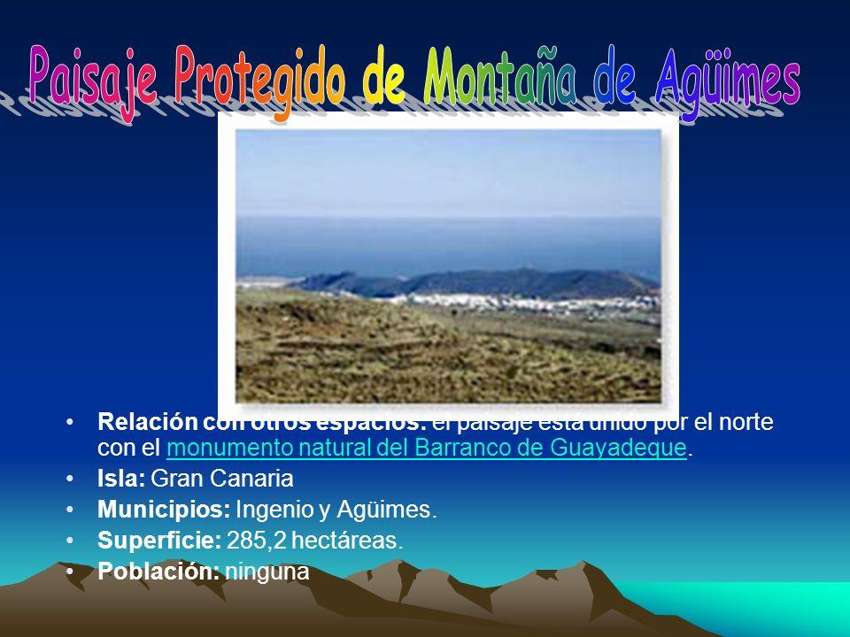 Paisaje Protegido de Montaña de Agüimes