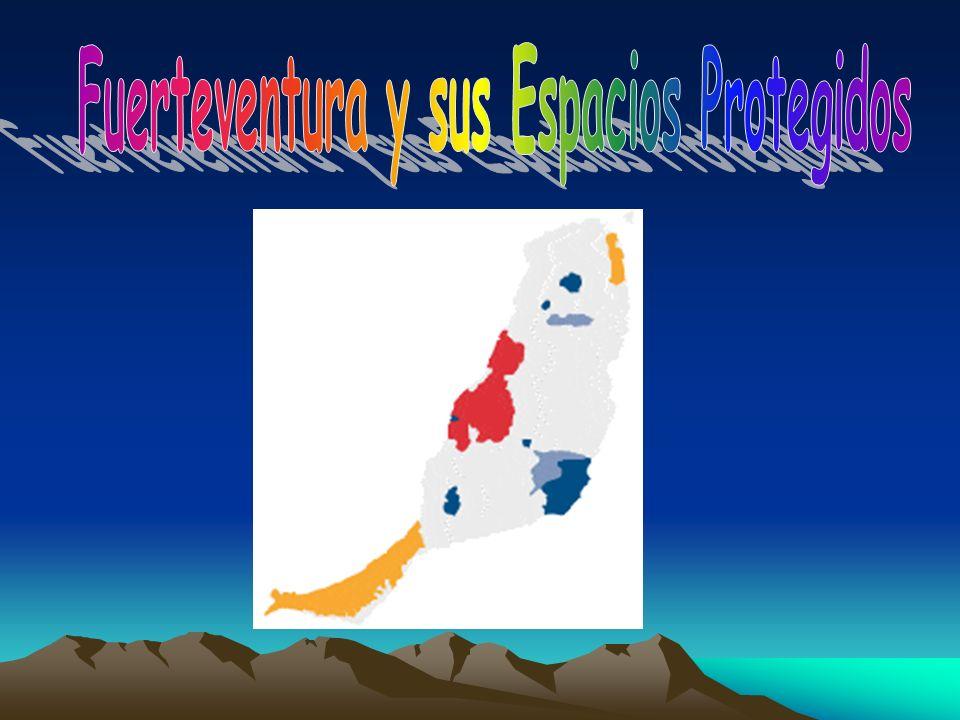 Fuerteventura y sus Espacios Protegidos