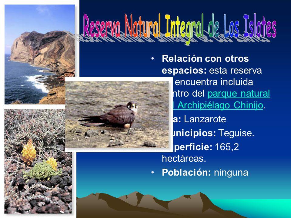 Reserva Natural Integral de Los Islotes