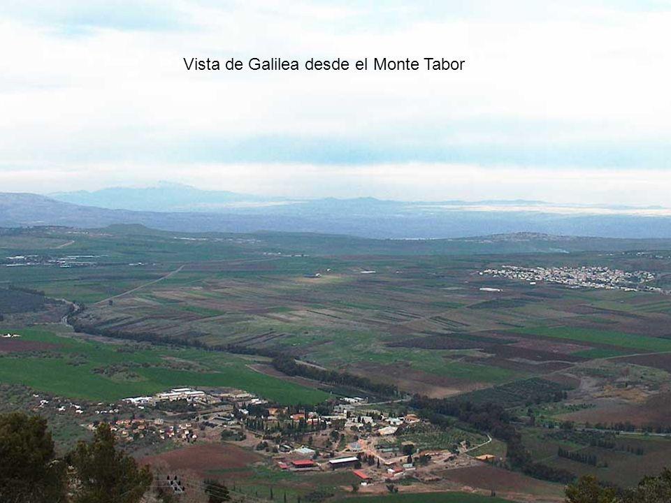 Vista de Galilea desde el Monte Tabor