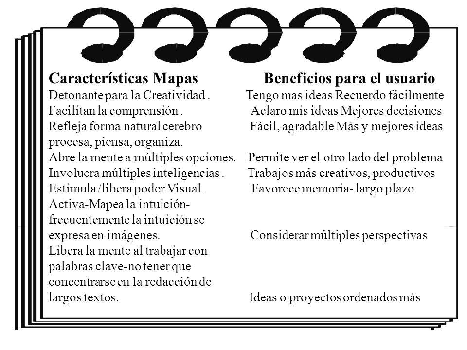 Características Mapas Beneficios para el usuario