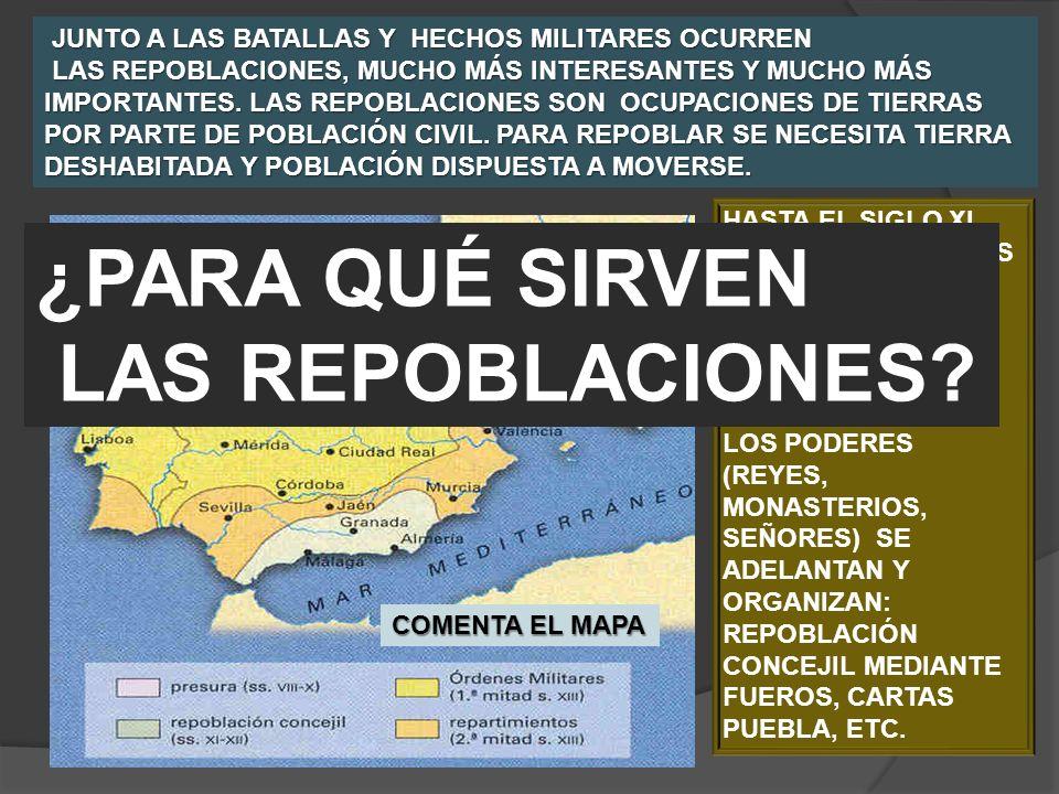 ¿PARA QUÉ SIRVEN LAS REPOBLACIONES COMENTA EL MAPA