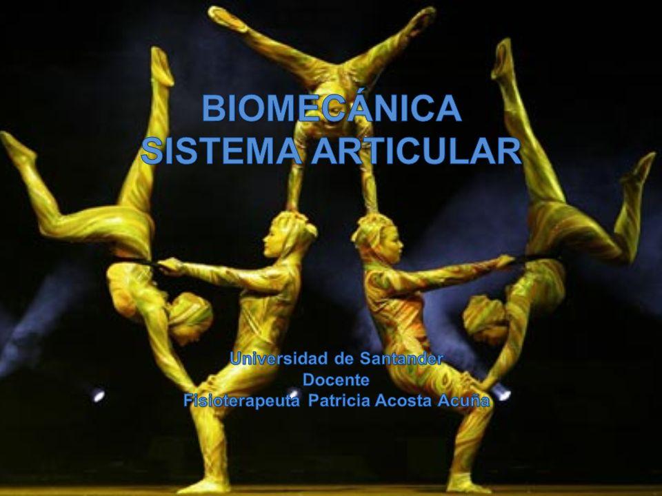 Biomecánica SISTEMA ARTICULAR