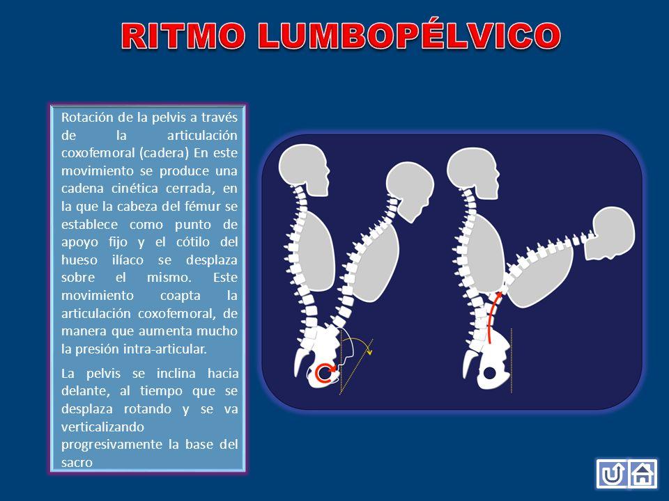 RITMO LUMBOPÉLVICO