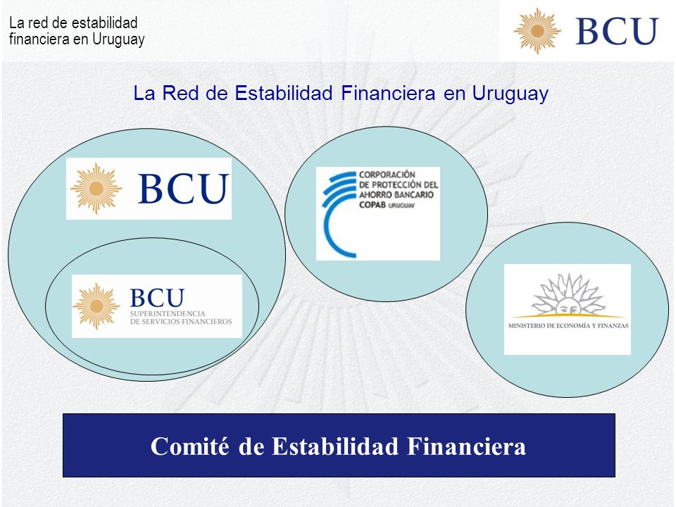 La Red de Estabilidad Financiera en Uruguay