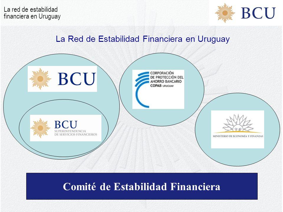 La Red de Estabilidad Financiera en Uruguay