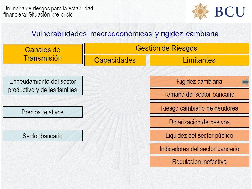Vulnerabilidades macroeconómicas y rigidez cambiaria