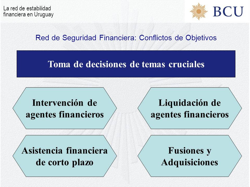 Red de Seguridad Financiera: Conflictos de Objetivos
