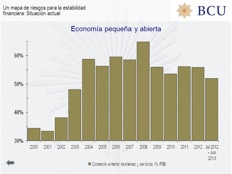 Economía pequeña y abierta