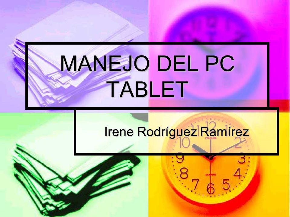 Irene Rodríguez Ramírez