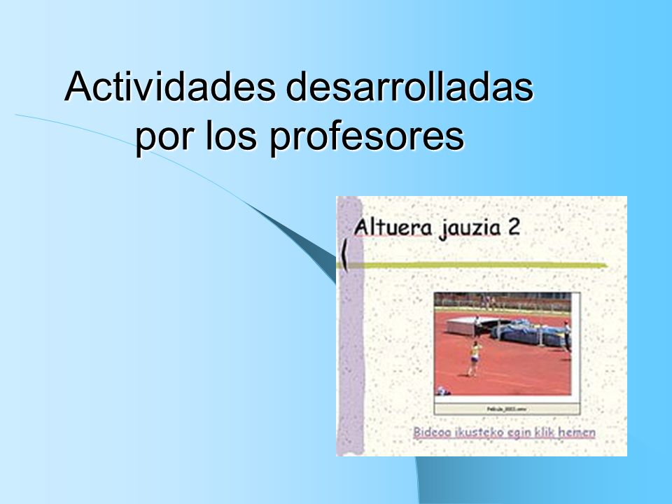 Actividades desarrolladas por los profesores