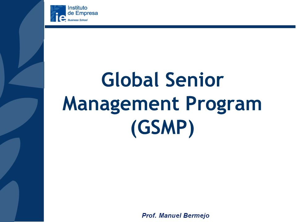 Global Senior Management Program (GSMP)