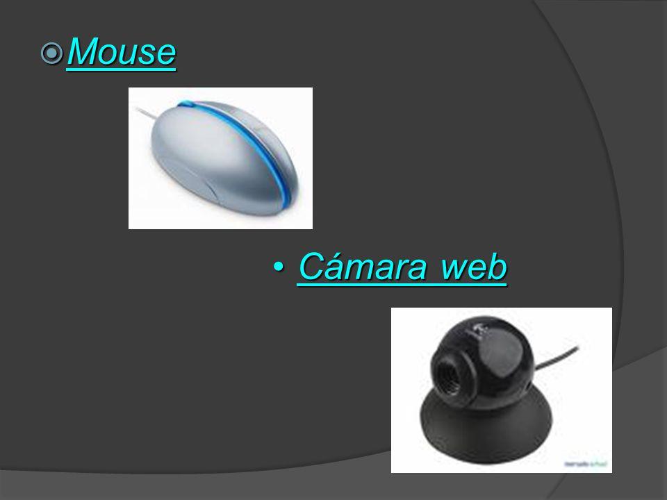 Mouse Cámara web