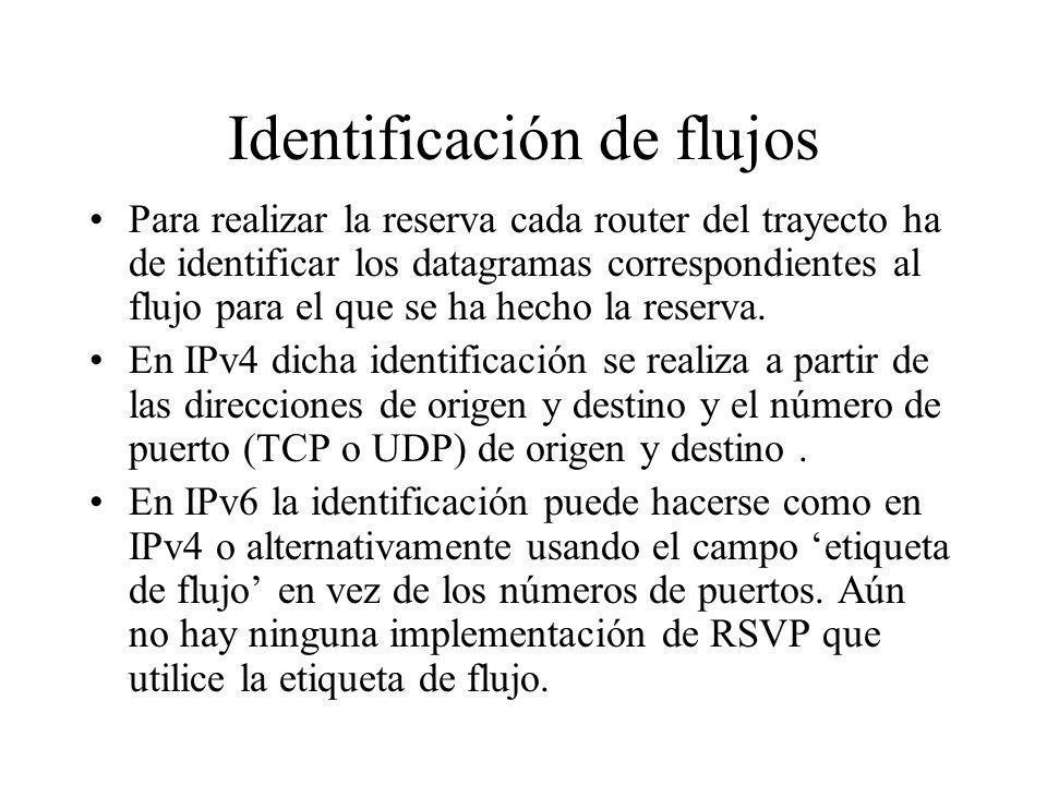 Identificación de flujos