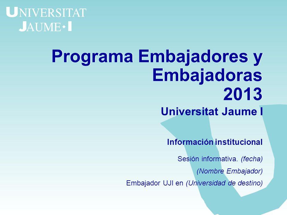 Programa Embajadores y Embajadoras 2013