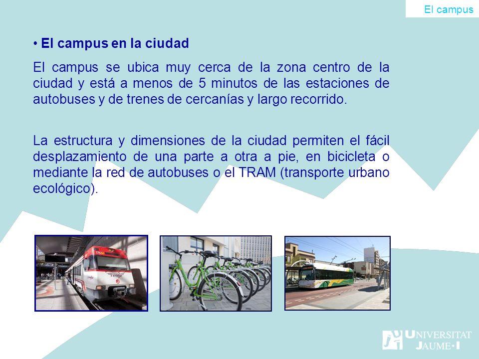 El campus El campus en la ciudad.