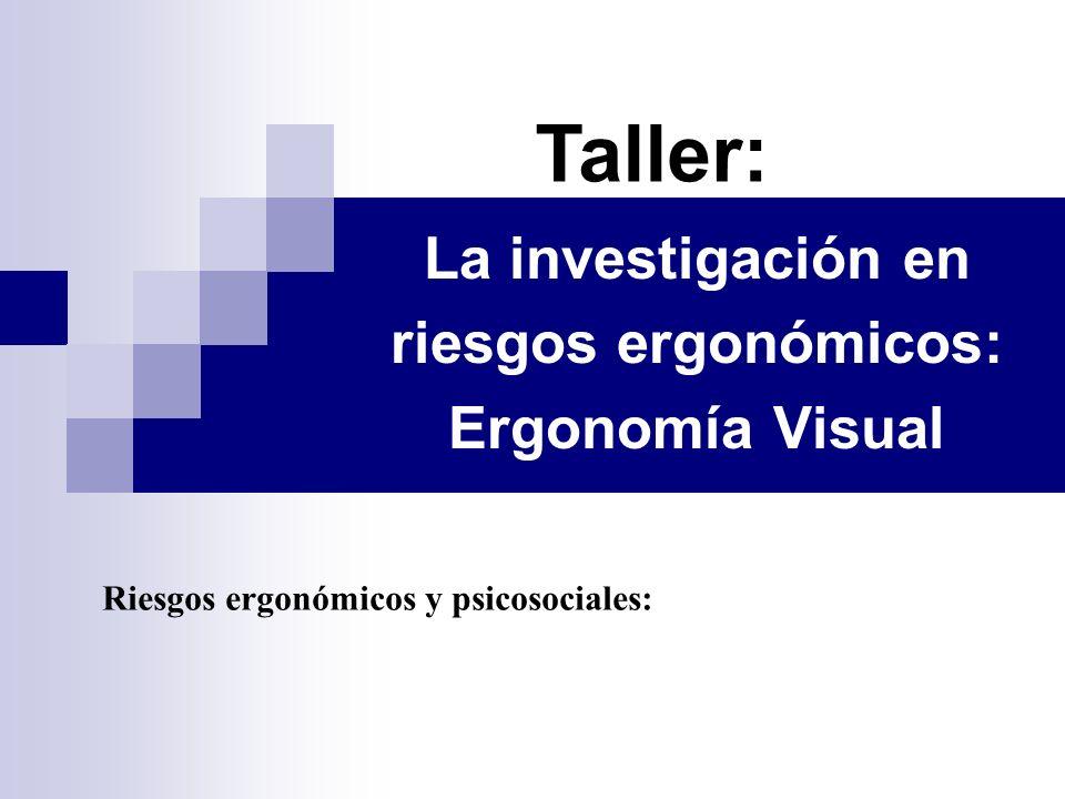La investigación en riesgos ergonómicos: Ergonomía Visual