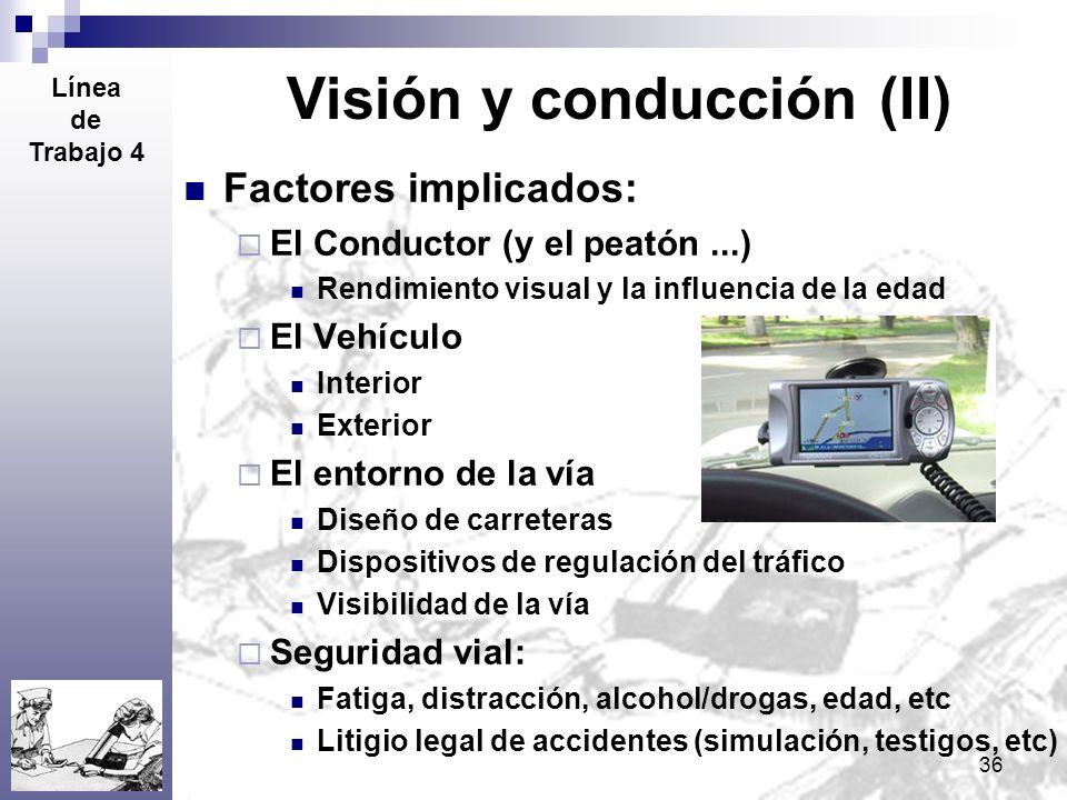 Visión y conducción (II)