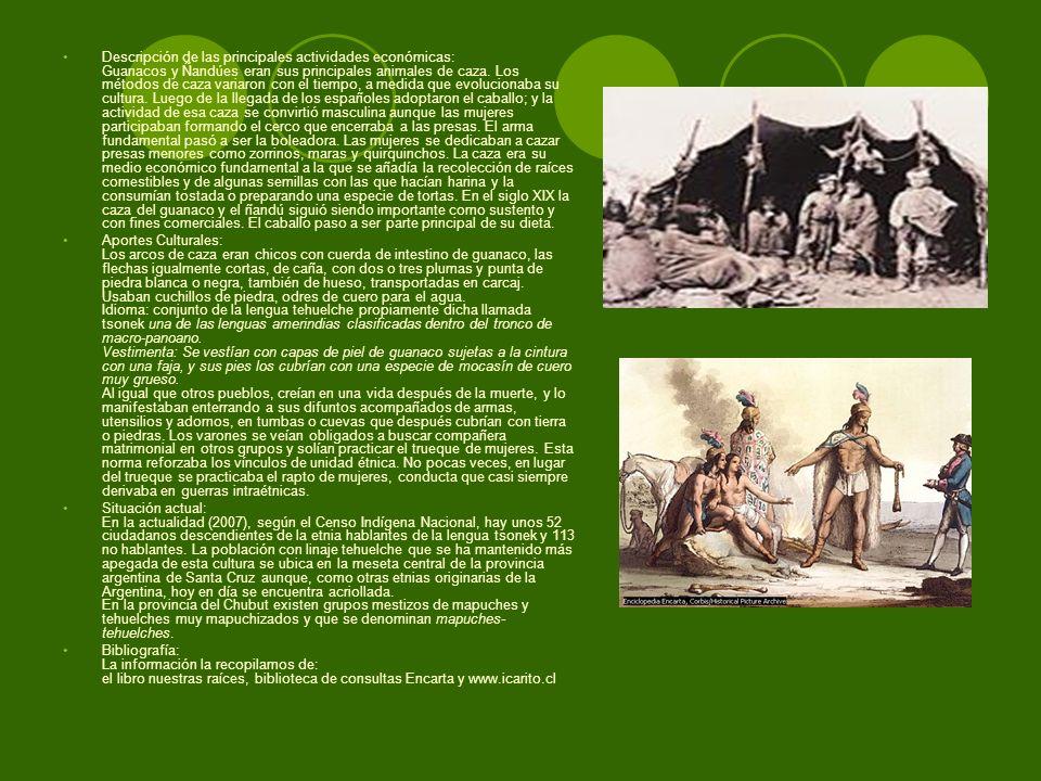 Descripción de las principales actividades económicas: Guanacos y Ñandúes eran sus principales animales de caza. Los métodos de caza variaron con el tiempo, a medida que evolucionaba su cultura. Luego de la llegada de los españoles adoptaron el caballo; y la actividad de esa caza se convirtió masculina aunque las mujeres participaban formando el cerco que encerraba a las presas. El arma fundamental pasó a ser la boleadora. Las mujeres se dedicaban a cazar presas menores como zorrinos, maras y quirquinchos. La caza era su medio económico fundamental a la que se añadía la recolección de raíces comestibles y de algunas semillas con las que hacían harina y la consumían tostada o preparando una especie de tortas. En el siglo XIX la caza del guanaco y el ñandú siguió siendo importante como sustento y con fines comerciales. El caballo paso a ser parte principal de su dieta.