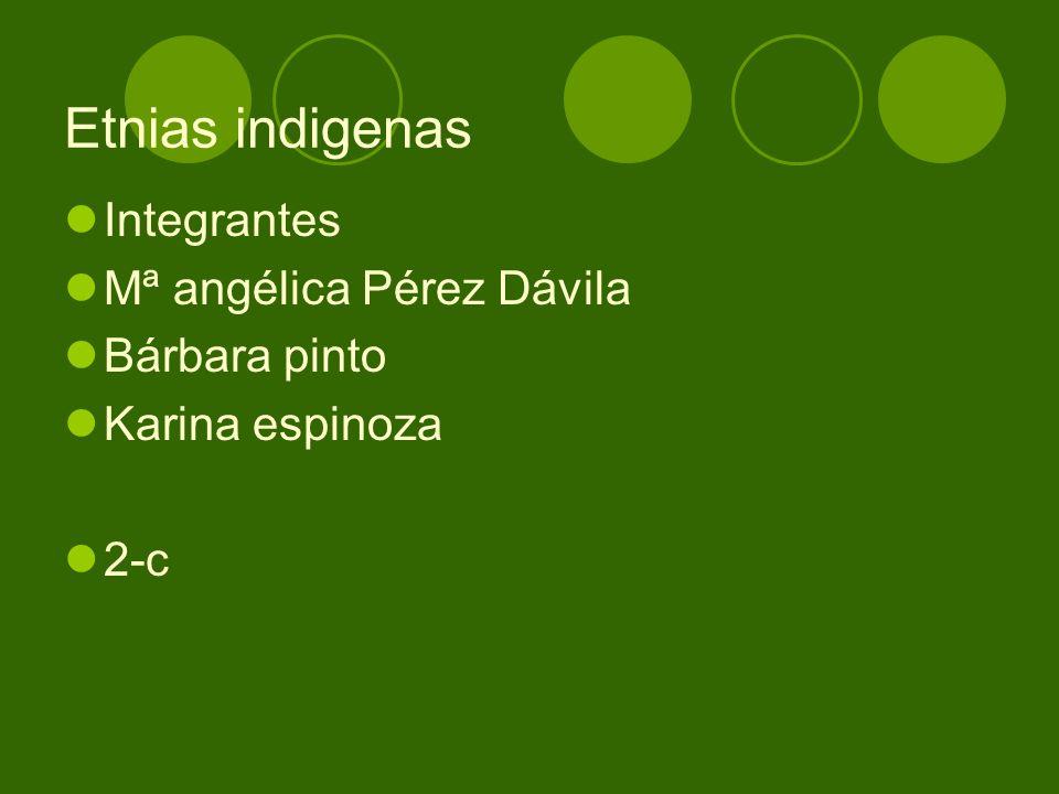 Etnias indigenas Integrantes Mª angélica Pérez Dávila Bárbara pinto