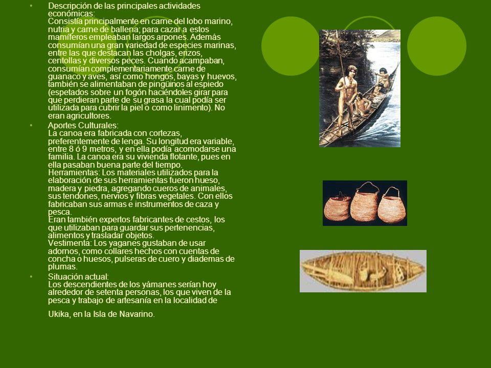 Descripción de las principales actividades económicas: Consistía principalmente en carne del lobo marino, nutria y carne de ballena; para cazar a estos mamíferos empleaban largos arpones. Además consumían una gran variedad de especies marinas, entre las que destacan las cholgas, erizos, centollas y diversos peces. Cuando acampaban, consumían complementariamente carne de guanaco y aves, así como hongos, bayas y huevos, también se alimentaban de pingüinos al espiedo (espetados sobre un fogón haciéndoles girar para que perdieran parte de su grasa la cual podía ser utilizada para cubrir la piel o como linimento). No eran agricultores.