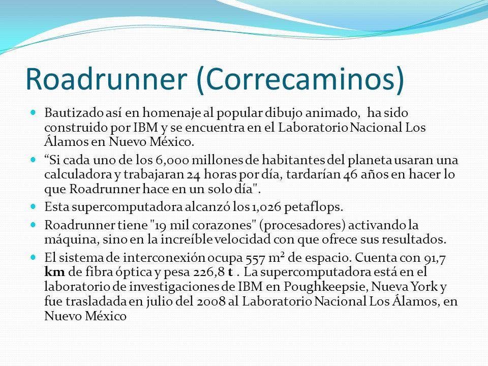 Roadrunner (Correcaminos)