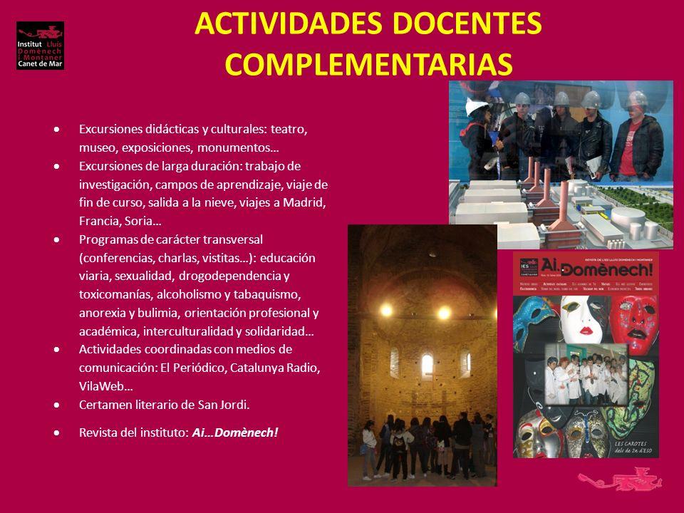 ACTIVIDADES DOCENTES COMPLEMENTARIAS