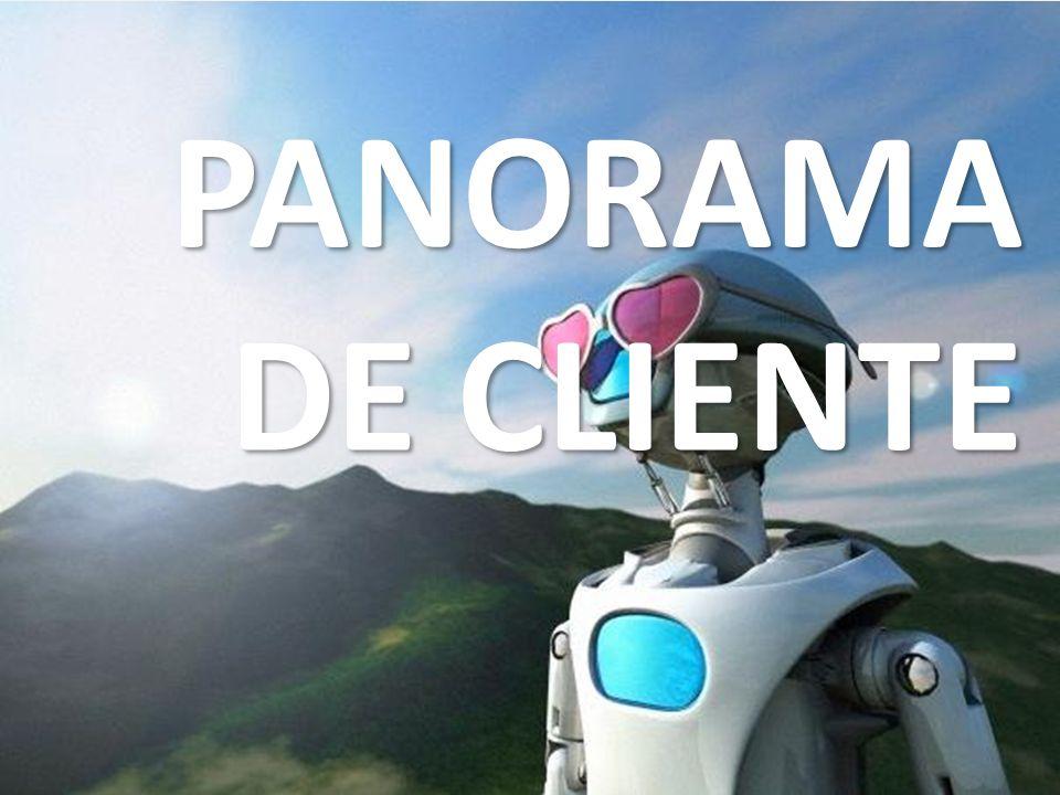 PANORAMA DE CLIENTE Qué quiere el cliente.