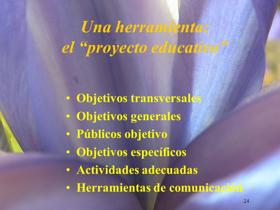 Una herramienta: el proyecto educativo