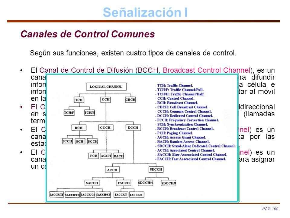 Señalización I Canales de Control Comunes