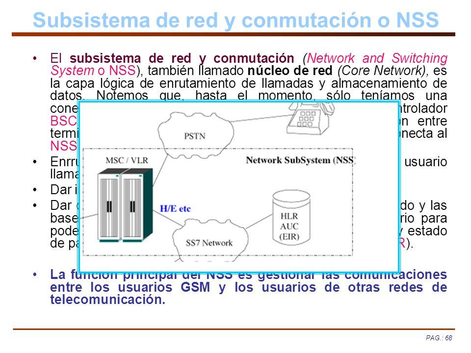 Subsistema de red y conmutación o NSS