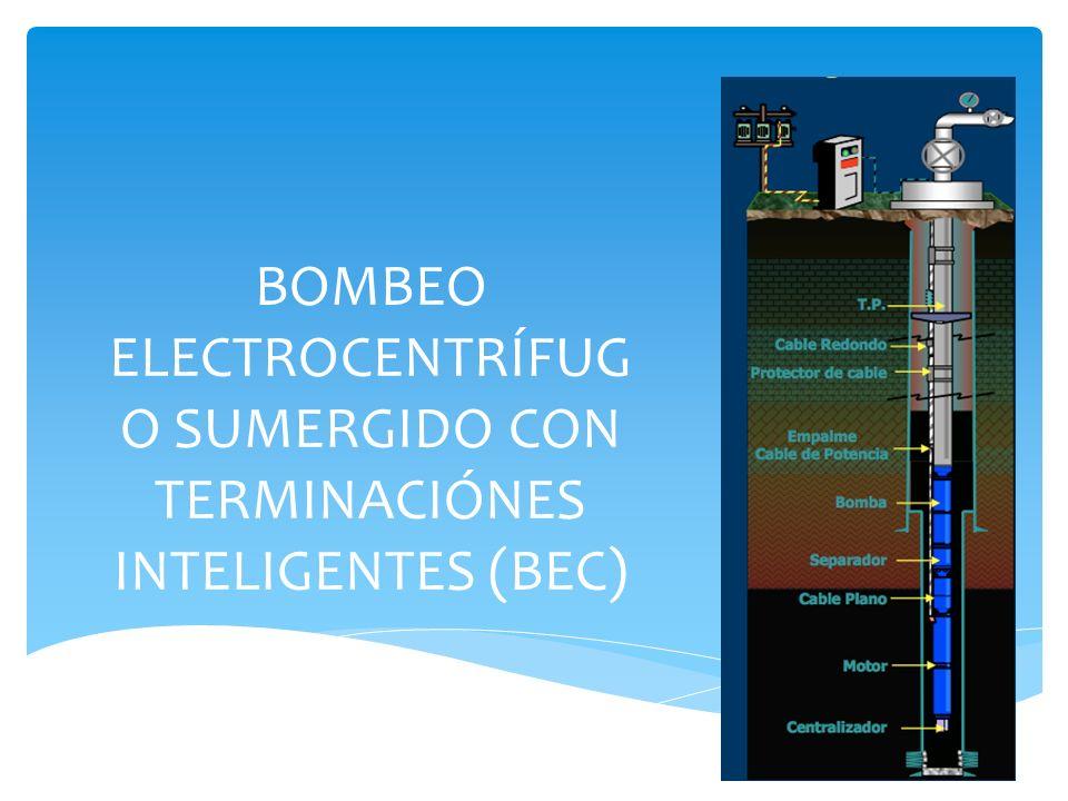 BOMBEO ELECTROCENTRÍFUGO SUMERGIDO CON TERMINACIÓNES INTELIGENTES (BEC)