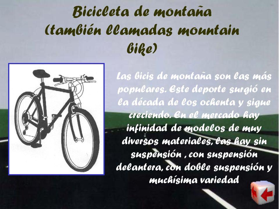 Bicicleta de montaña (también llamadas mountain bike)