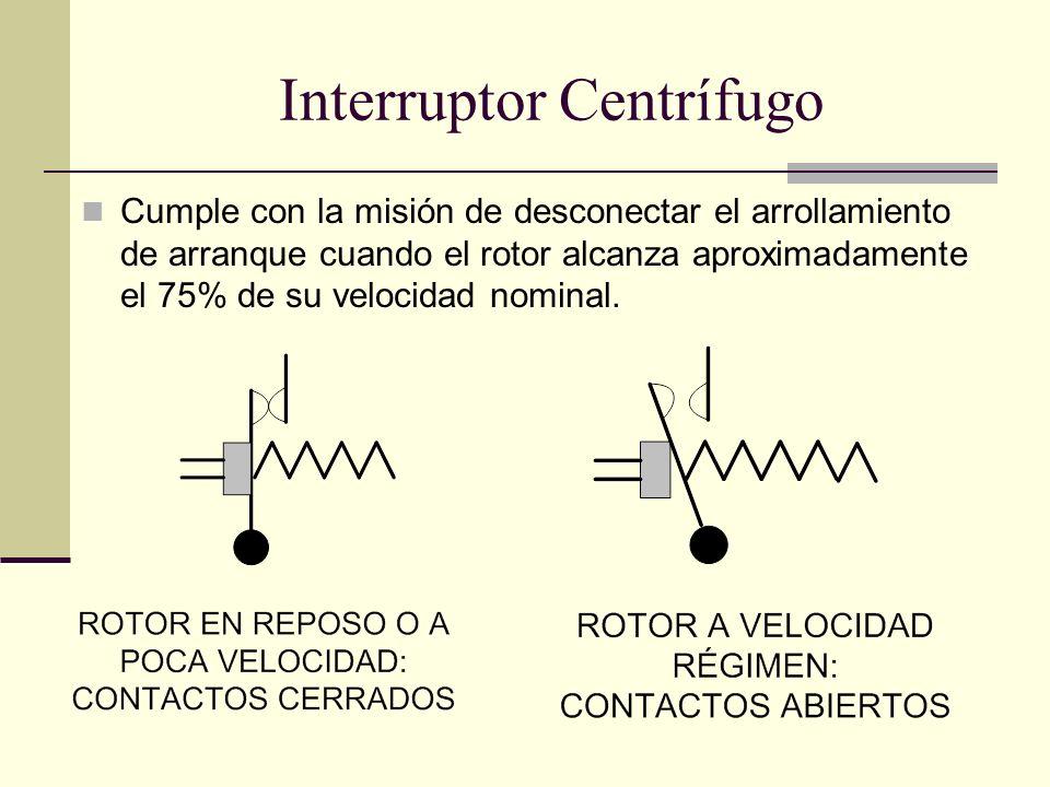 Interruptor Centrífugo