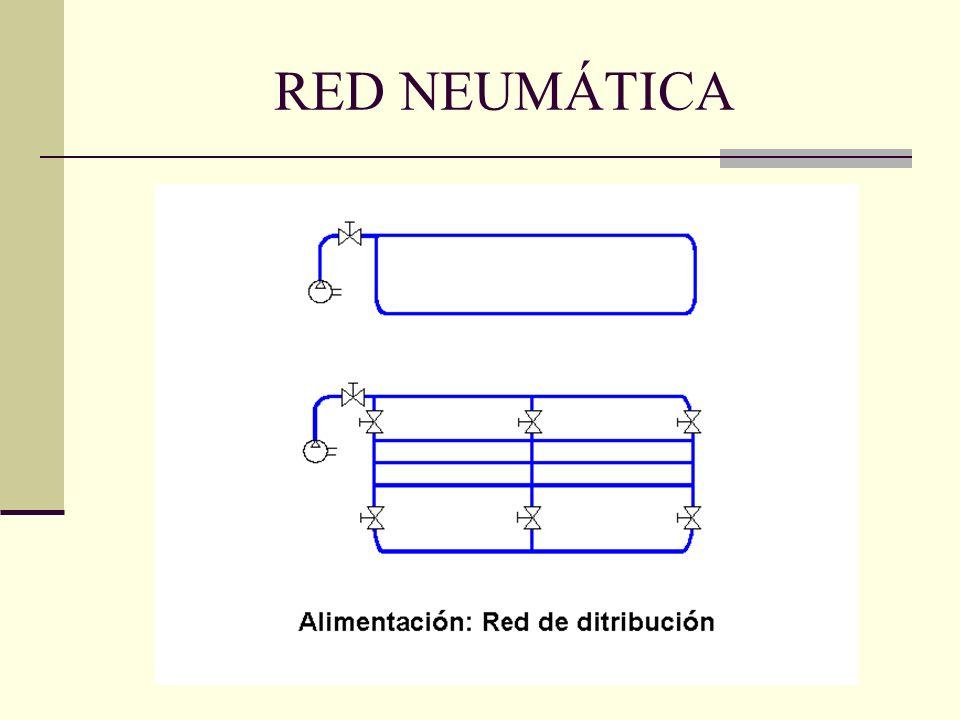 RED NEUMÁTICA