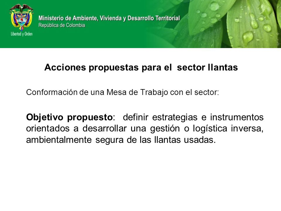 Acciones propuestas para el sector llantas