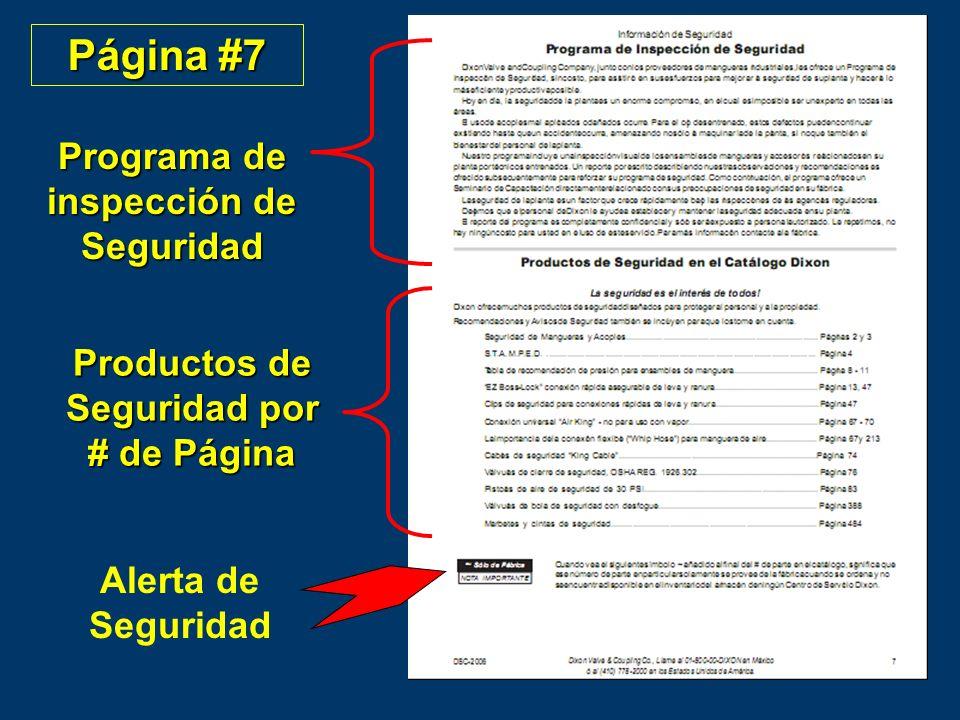 Página #7 Programa de inspección de Seguridad
