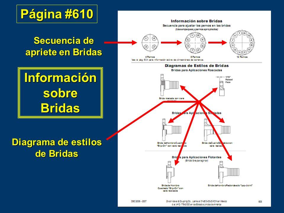 Página #610 Información sobre Bridas