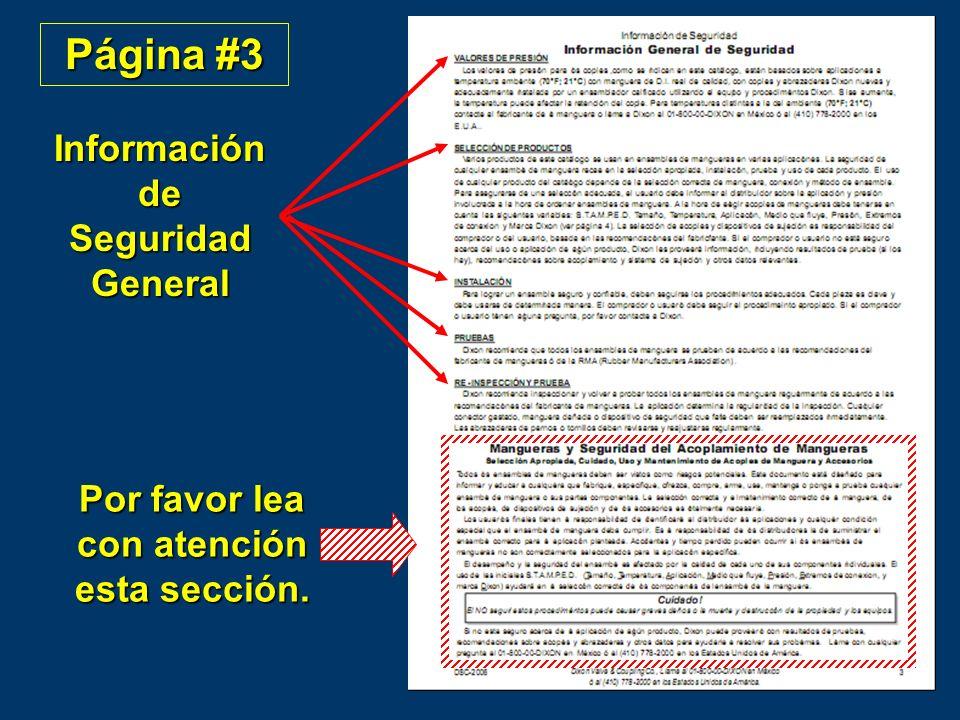 Página #3 Información de Seguridad General