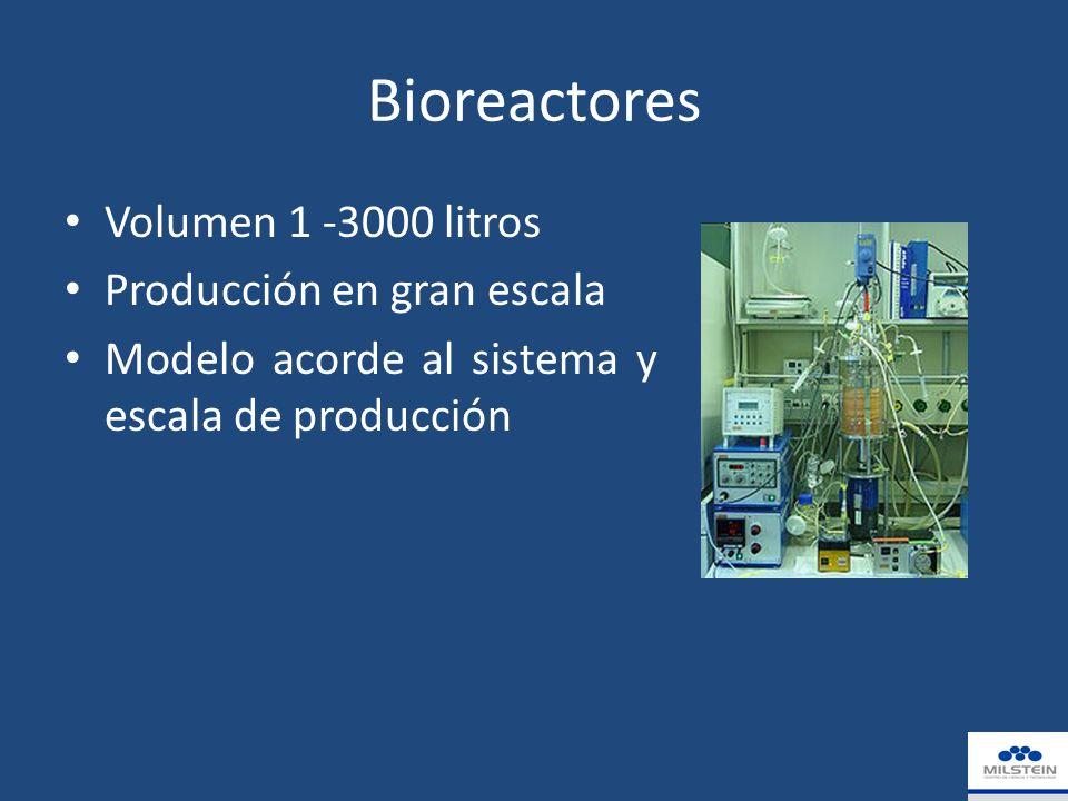 Bioreactores Volumen 1 -3000 litros Producción en gran escala