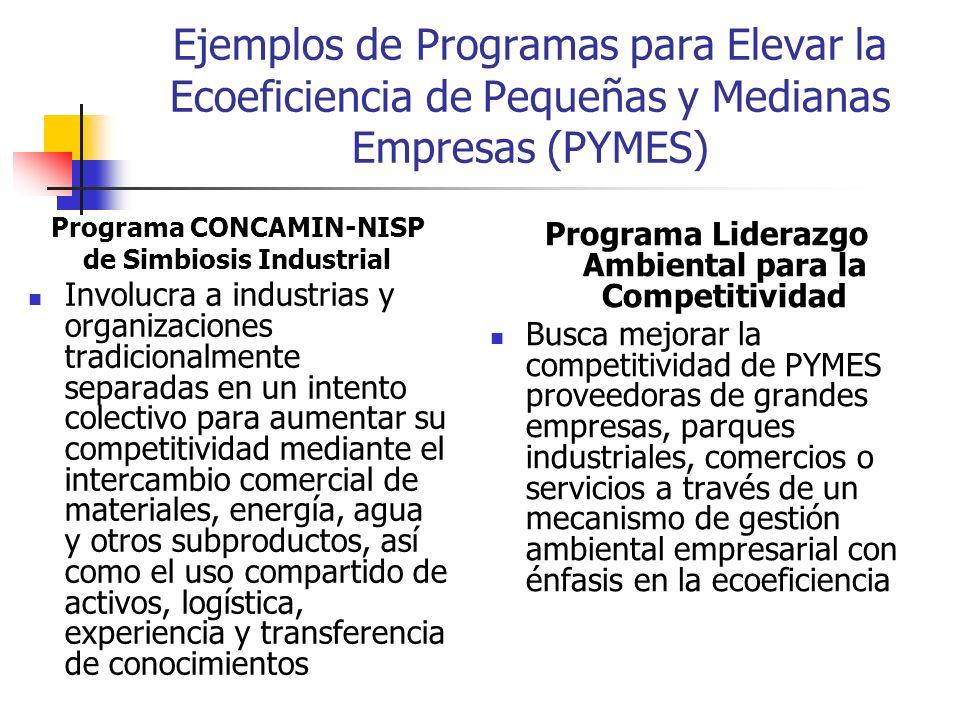 Ejemplos de Programas para Elevar la Ecoeficiencia de Pequeñas y Medianas Empresas (PYMES)