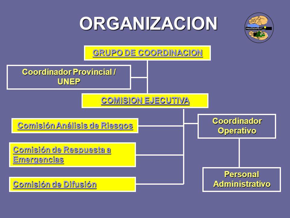 ORGANIZACION GRUPO DE COORDINACION Coordinador Provincial / UNEP