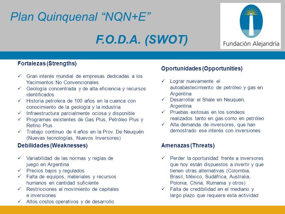 Plan Quinquenal NQN+E