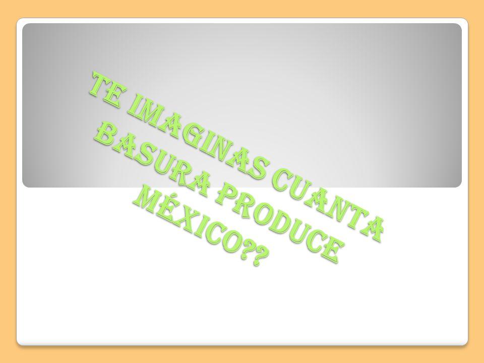 Te imaginas cuanta basura produce México