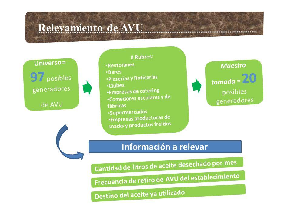 Información a relevar Relevamiento de AVU