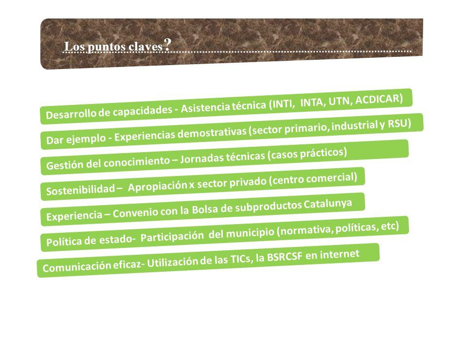 Los puntos claves Desarrollo de capacidades - Asistencia técnica (INTI, INTA, UTN, ACDICAR)